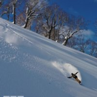 Jesse Parkinson in the Niseko BC