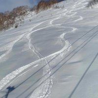First tracks at Moiwa ski-jo